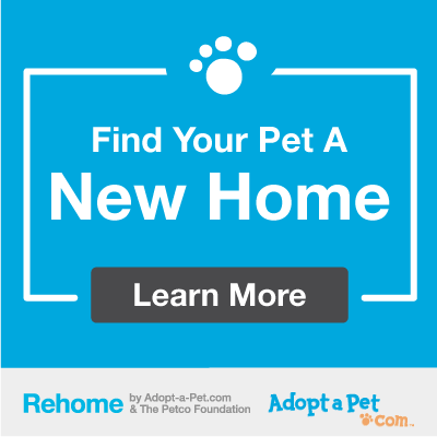 Find your pet a new home. Learn More. Rehome by Adopt-a-pet.com & the Petco foundation